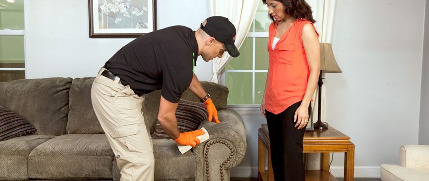 Orange, CA carpet upholstery cleaning